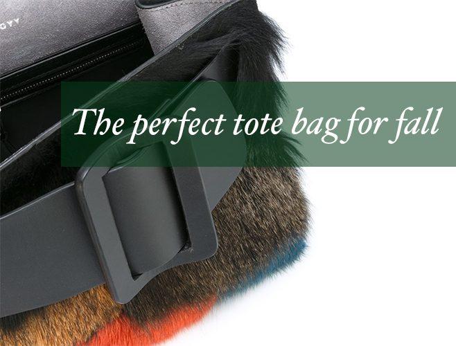fi-perfect-tote-bag